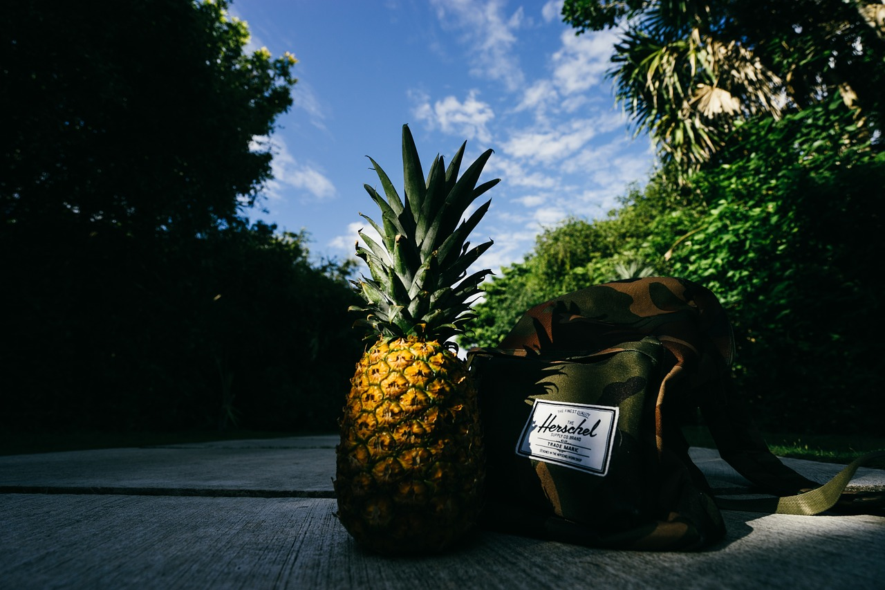 Ohromující léčivé účinky ananasu